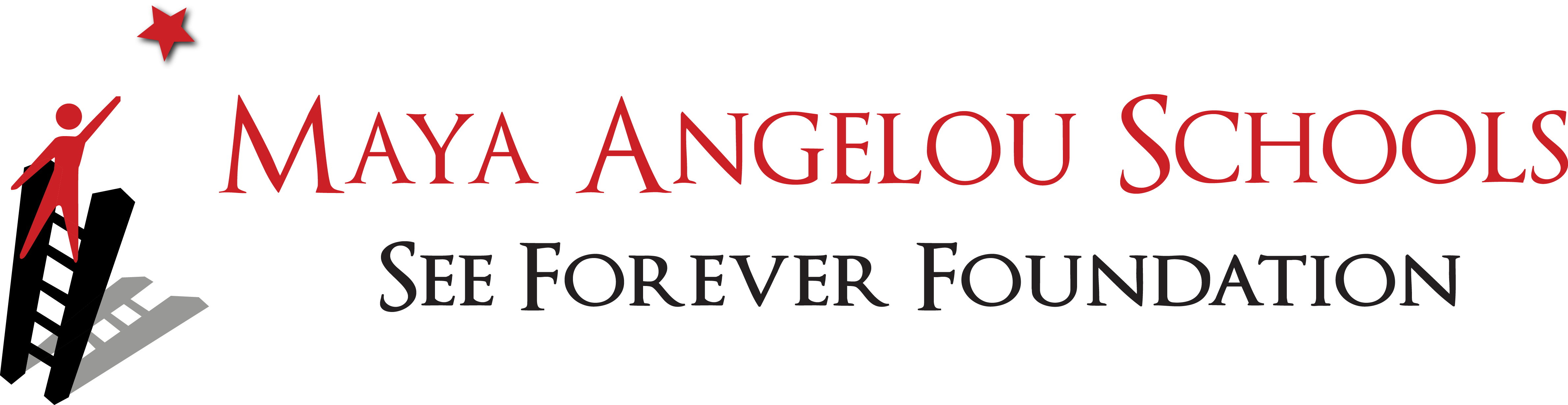 Maya Angelou Public Charter Schools - See Forever Foundation